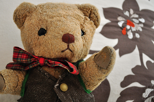 Chester the Bear by Flickr user ShardsofBlue