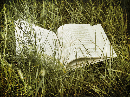 Book in grass photo by Florin Gorgan via Flickr
