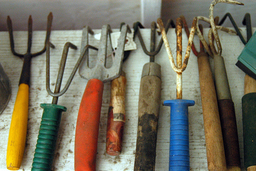 Garden Tools photo by Abby Lanes via Flickr