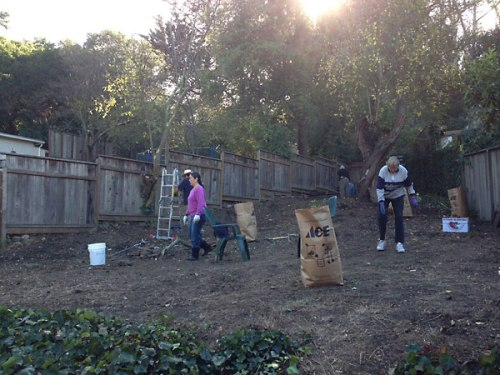 Volunteers hard at work clearing the garden, November 16, 2013