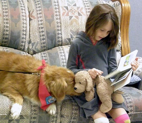 Reading to dogs at the Southworth Library