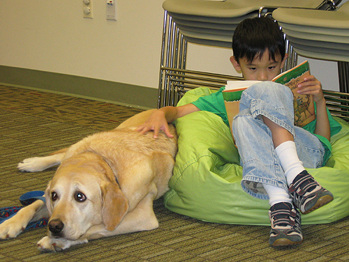 Reading to dogs photo by Fairfax Library Foundation via Flickr