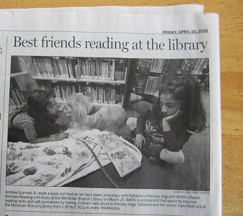 Reading to Natasha the BARK therapy dog at the Montclair Library