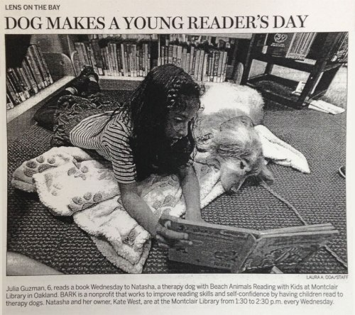 Photo of BARK reading program at Montclair Library from Oakland Tribune