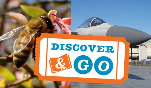 Discover and Go with your Oakland Library card