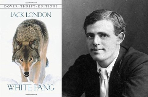 Author Jack London and his book, White Fang